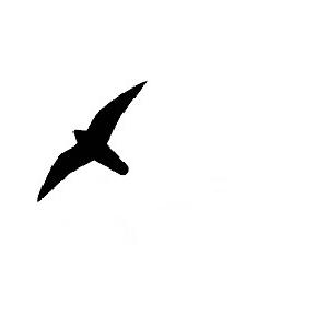 Fugleskræmmer - Sort 19,5 X 25 Cm