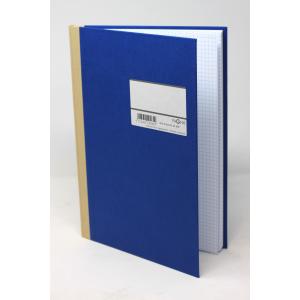 Protokol Pagna - A4 Kvadreret Blå