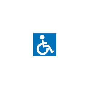 Pictogram Handicap Rullestol